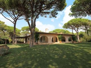 Bright 7 bedroom Villa in Pian di Rocca with Internet Access - Pian di Rocca vacation rentals