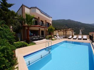 Villa Kalkan Seaview - Kalkan vacation rentals