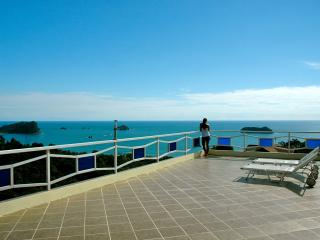 Monkeys Galore! Amazing Ocean Views, Pool & Waterf - Manuel Antonio vacation rentals