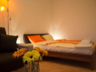 Comfortable Condo with Internet Access and Wireless Internet - Szeged vacation rentals