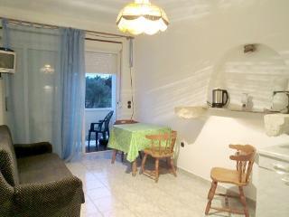 Apartment Mico B1 - Rab vacation rentals