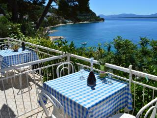 Comfy Apartment with Fantastic View - Zivogosce vacation rentals