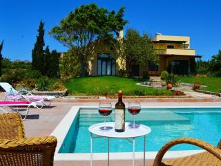 Villa Ellie Premium Residence For RelaxingVacation - Akrotiri vacation rentals