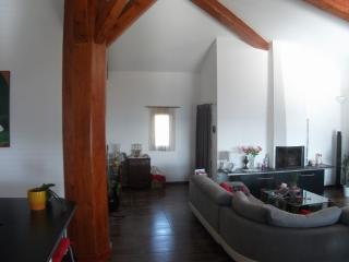 House Pégomas (10km from Cannes) France - Pegomas vacation rentals