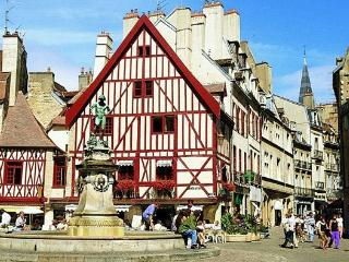 Idéal T2 parking privé Darcy Centre Gare-ville - Dijon vacation rentals