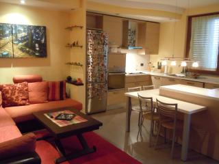 Nice Condo with Internet Access and A/C - Lainate vacation rentals