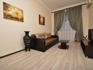 Spacious apartment on Kreschatik st. - Kiev vacation rentals