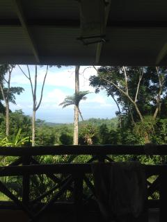 Howler House Beautiful Home with pool view of ocea - Uvita vacation rentals