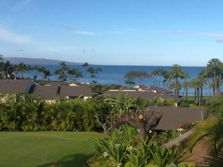 Beautiful Condo with Hot Tub and Wireless Internet - Wailea vacation rentals