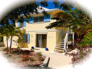 Sweet Escape Villa Waterfront w/Jeep/Boat Optional - Providenciales vacation rentals