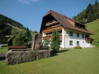 Vacation Apartment in Bad Rippoldsau-Schapbach - 291 sqft, 35sqm, max. 3 people (# 8636) - Bad Rippoldsau-Schapbach vacation rentals