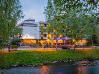 Guest Room in Bad Liebenzell -  (# 8775) - Bad Liebenzell vacation rentals