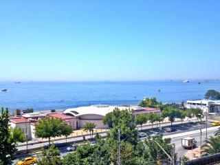 Warm & Joyful Place in Sultanahmet - Istanbul vacation rentals