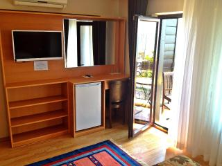 Room with a garden in center - Istanbul vacation rentals