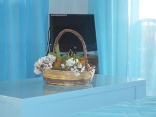 Villa Dimitra !!! - Koroni vacation rentals