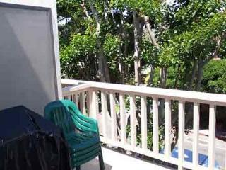 2 Bedroom, 2 Bathroom Vacation Rental in Solana Beach - (SUR4) - Solana Beach vacation rentals