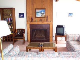 2 Bedroom, 2 Bathroom Vacation Rental in Solana Beach - (SUR149) - Solana Beach vacation rentals