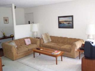 Two bedroom condo in Solana Beach Villa2 - Solana Beach vacation rentals