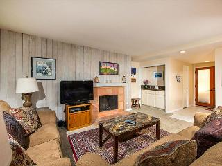 2 Bedroom, 2 Bathroom Vacation Rental in Solana Beach - (SUR7) - Solana Beach vacation rentals