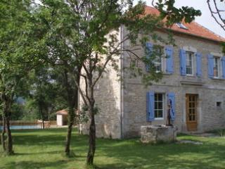 Nice 8 bedroom Ambeyrac Gite with Internet Access - Ambeyrac vacation rentals