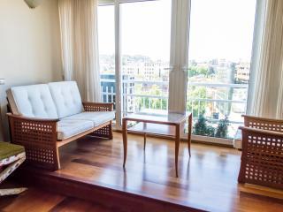 Maravilloso Apartamento con piscina RH11815 - Madrid vacation rentals