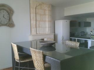 Grand T2 avec Vue sur sur la Garonne - Bordeaux vacation rentals