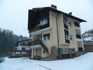 Cozy Apartment with Short Breaks Allowed and Central Heating - Cavalese vacation rentals