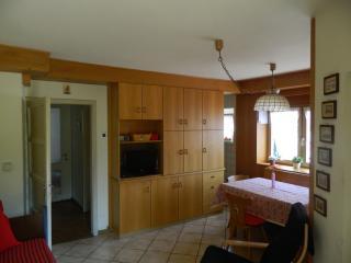 Cavalese: appartamento in villa con giardino - Cavalese vacation rentals