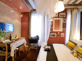E2DG Moonlight Shadow - Paris vacation rentals