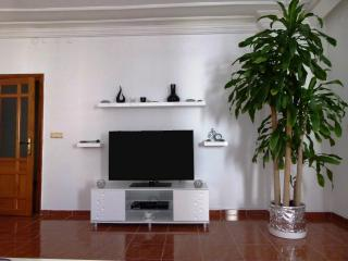 Nice Condo with Internet Access and Television - Mahmutlar vacation rentals