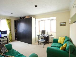 Hull Old Town Studio Apartment - Kingston-upon-Hull vacation rentals