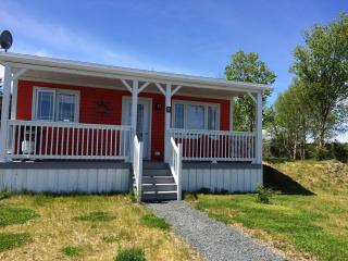 2 bedroom Cottage with Deck in New Harbour - New Harbour vacation rentals