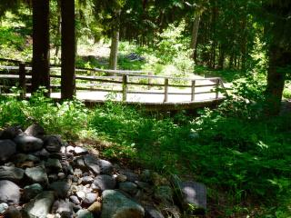 Nice Condo with Deck and Internet Access - Whitefish vacation rentals