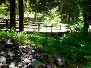 Whitefish Mountain Retreat - Whitefish vacation rentals