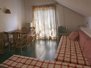 AFFITTASI AMPIO BILOCALE con VISTA per 6 PERSONE - Sauze di Cesana vacation rentals
