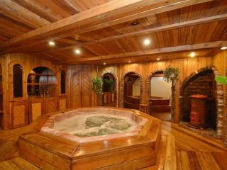 6 Bed Blue Mountain Cottage with Indoor Hot Tub #1 - Blue Mountains vacation rentals