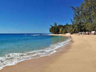 Beachfront apartment on Paynes Bay Beach. BS CC1 - Barbados vacation rentals