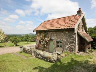 Romantic 1 bedroom House in Tintern - Tintern vacation rentals