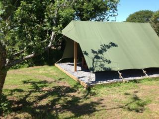 Buttercup Pitch - COASTAL WOOD CAMPING - Amroth vacation rentals