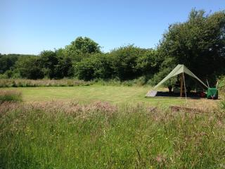 Dandelion Pitch - COASTAL WOOD CAMPING - Amroth vacation rentals