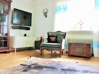 SPACIOUS 3 BED. APT. W/FREE PARKING - Reykjavik vacation rentals