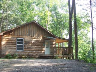 Beautiful 3 bedroom Cabin in Townsend - Townsend vacation rentals