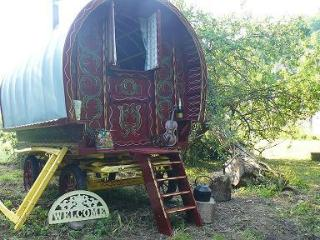 Lovely 1 bedroom Shepherds hut in Forest of Dean with Trampoline - Forest of Dean vacation rentals