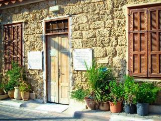 Penthouse Suite with Spa Bath - Hevrat Shas St. 8 - Tel Aviv vacation rentals