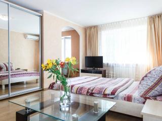 Apartment on Panfilovzev street (center) - Zaporizhzhya vacation rentals