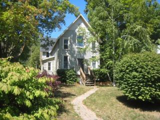 In-town Suttons Bay; Walk to Beach; On Wine Trail - Suttons Bay vacation rentals