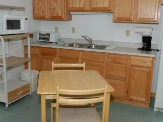 Nice Almont House rental with A/C - Almont vacation rentals
