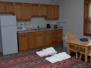 Hotel Style Room with Kitchenette, Futon and Full Bath at Three Rivers Resort in Almont (Lodge Room C) - Almont vacation rentals