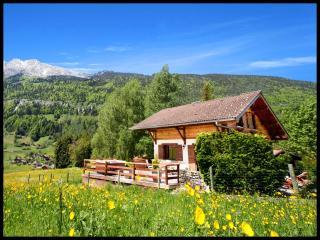 4 STARS - DREAM CHALET in La Clusaz area - HOT TUB - La Clusaz vacation rentals