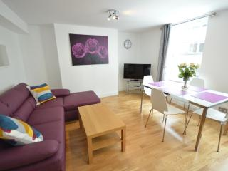 Brand New 2 bed West End Apt on Wardour Street - London vacation rentals